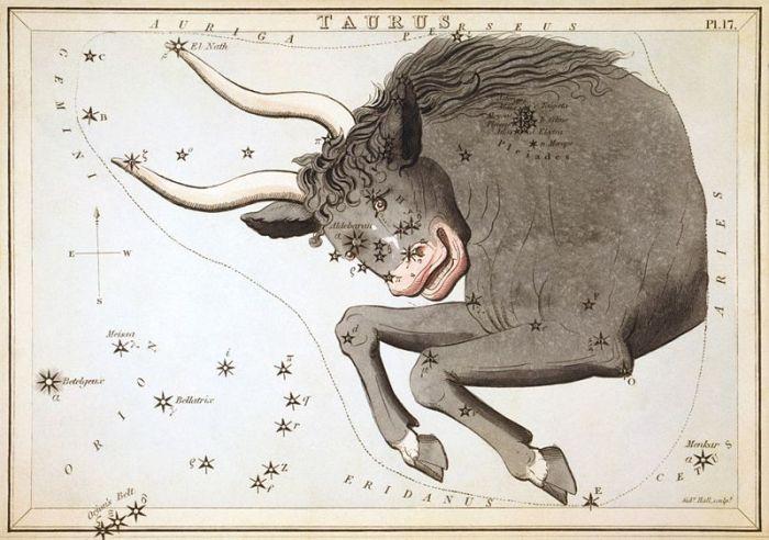 Sidney_Hall_-_Urania's_Mirror_-_Taurus